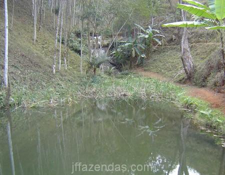 Sítio em Juiz de Fora/MG – 20 hectares