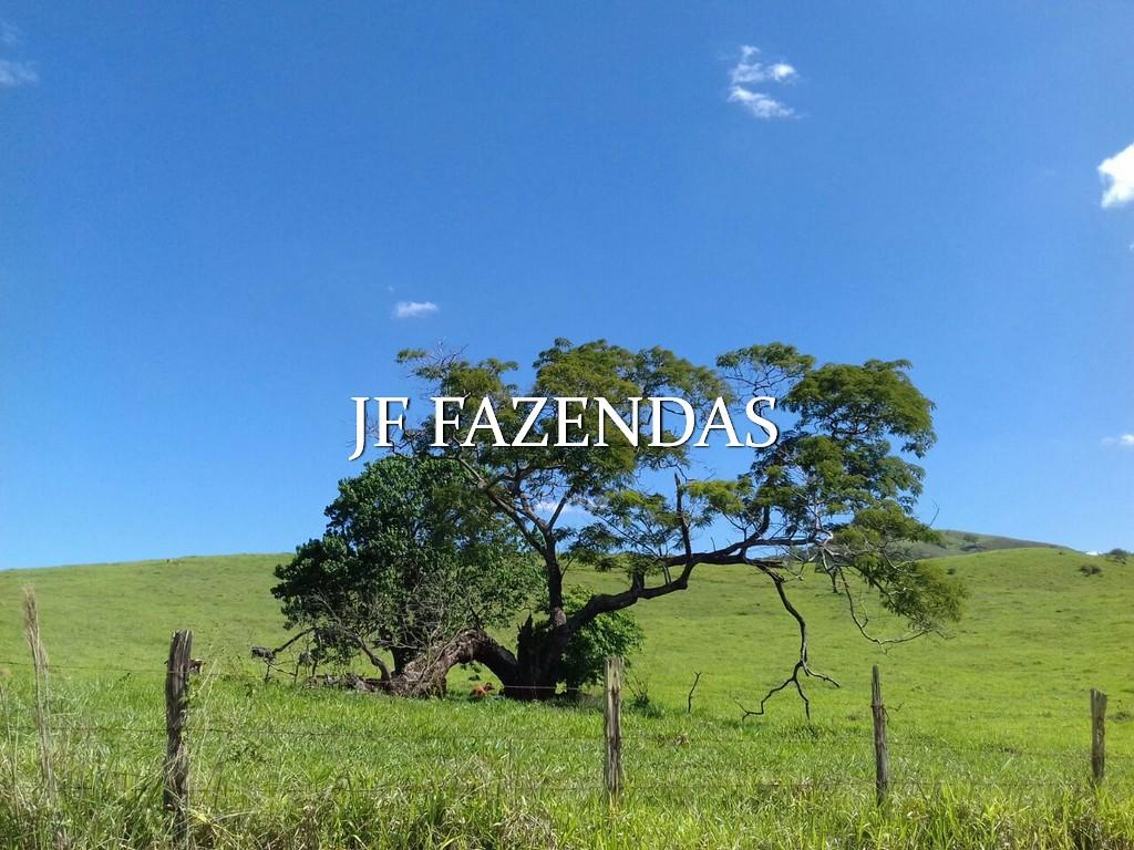 Fazenda em Bicas – MG – 320 hectares