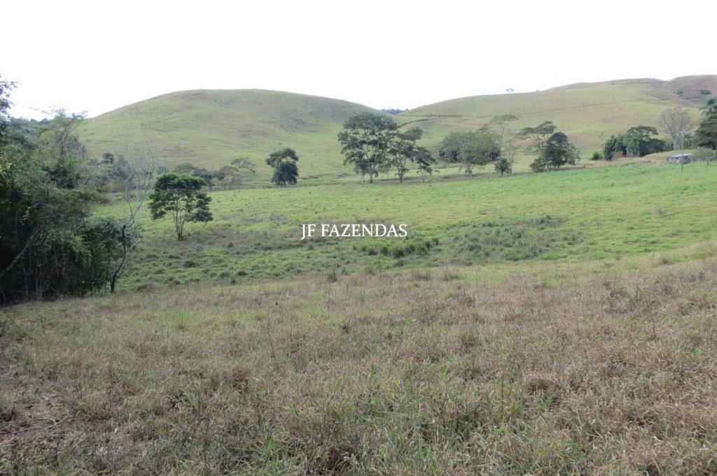 Fazenda Matias Barbosa – MG – 166 hectares