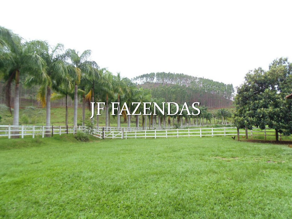 Fazenda em Santana do Deserto/MG – 370 hectares