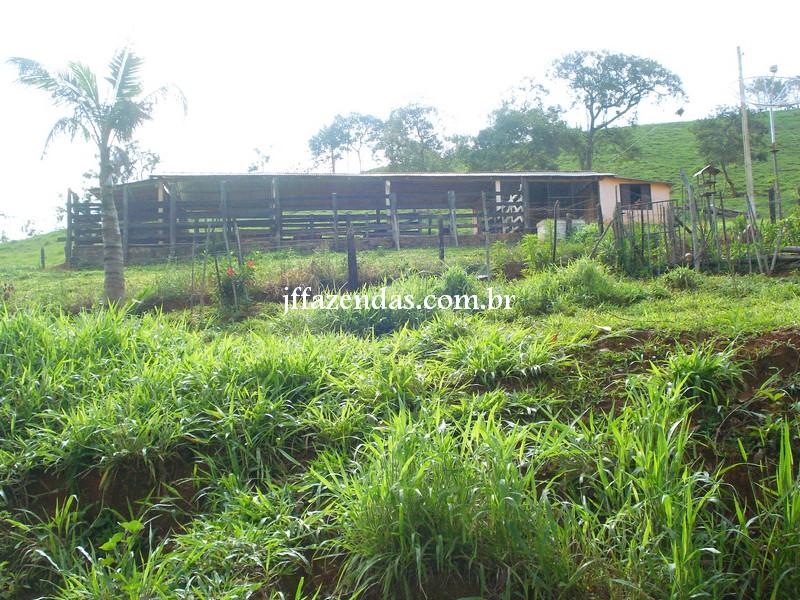 Sitio em Rio Novo – MG – 8 hectares