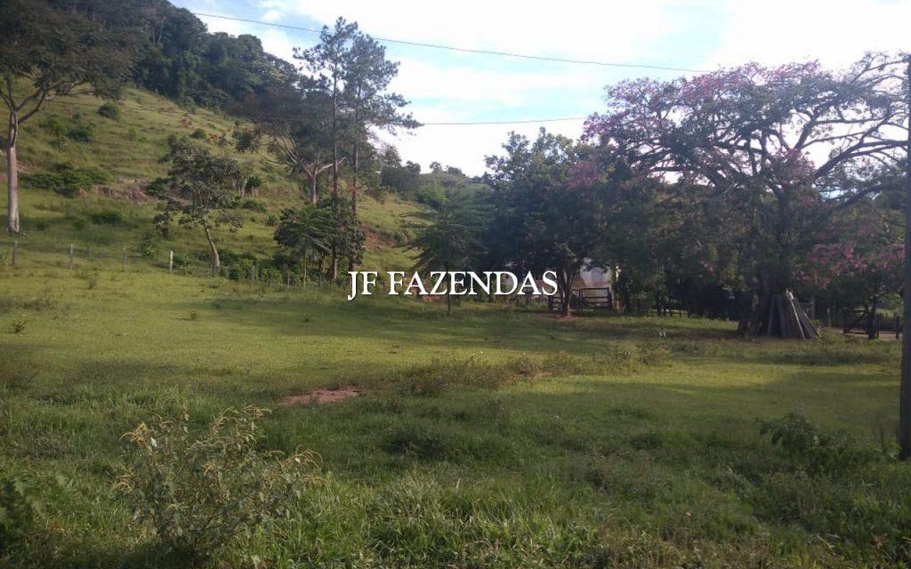 Fazenda em Juiz de Fora- MG – 81.29.60 hectares