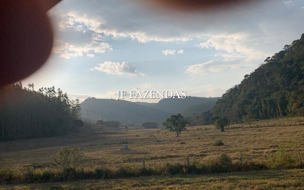 Fazenda em Juiz de Fora/MG – 227 hectares