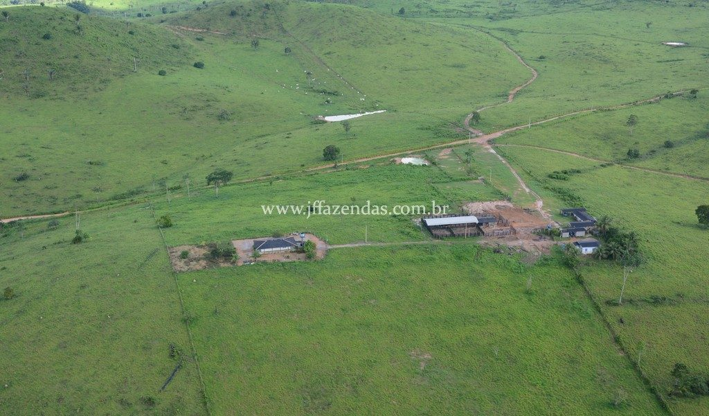 Fazenda em Uruará – PA -3178 hectares