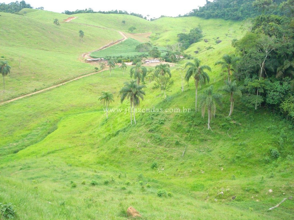 Fazendinha em Juiz de Fora/MG – 90 hectares