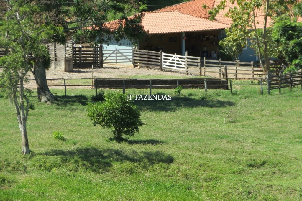 Fazenda em Juiz de Fora/MG – 145,7445 hectares