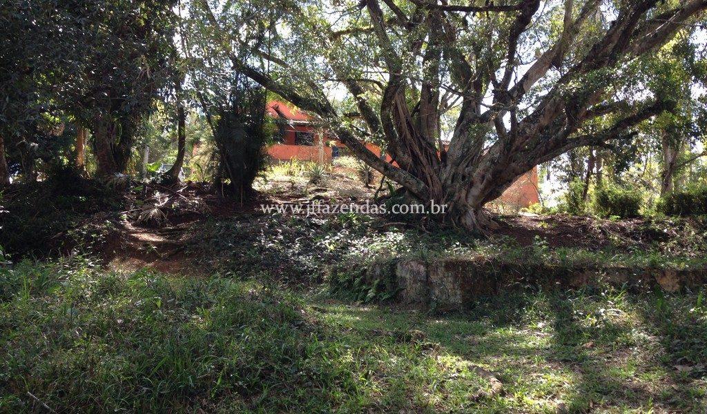 Sítio em Belmiro Braga/MG – 25 hectares