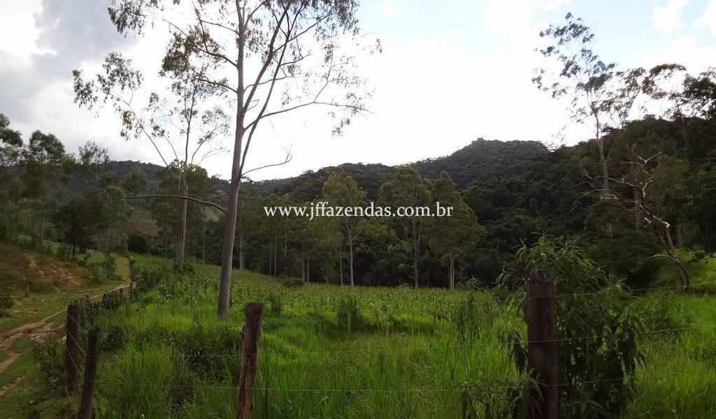 Fazenda 459,8 hectares em Belmiro Braga-MG