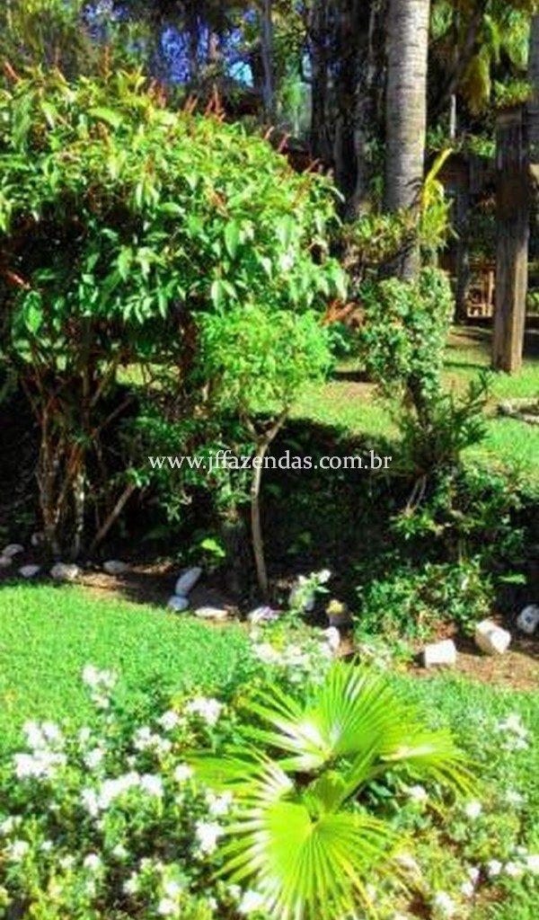 Granja de alto padrão  em Matias Barbosa – MG – 1,9 hectares