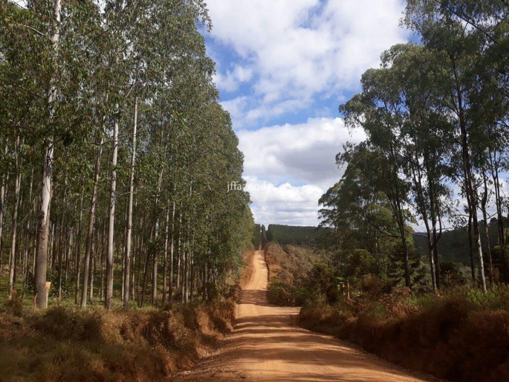 Grande Fazenda no sul de Minas- Andrelândia – MG – 6.500 hectares
