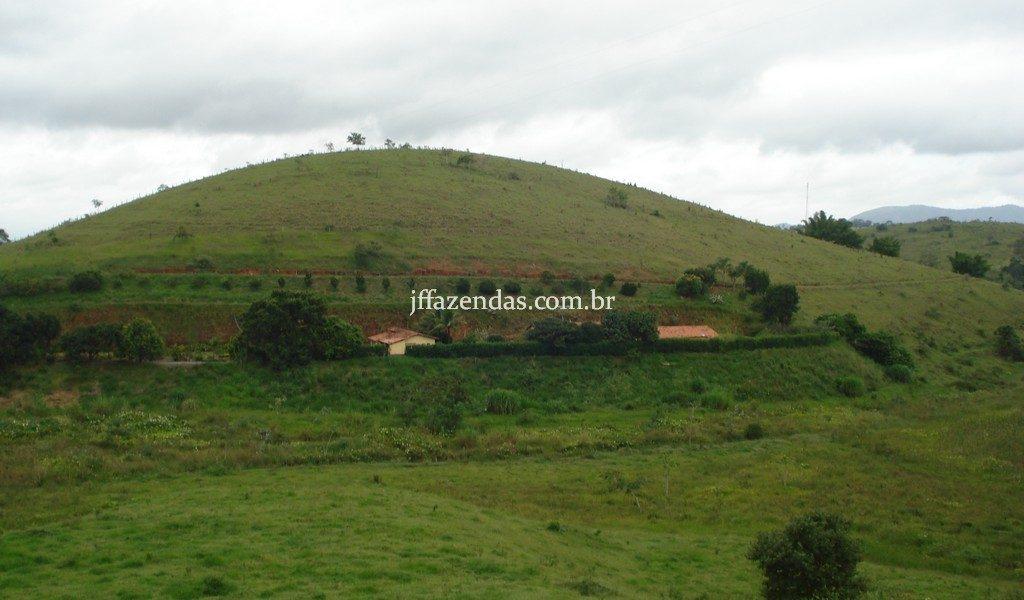 Sitio em Simão Pereira/MG – 10 hectares