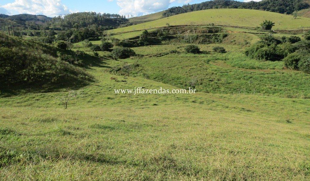 Fazenda – 148 hectares – Bicas – MG