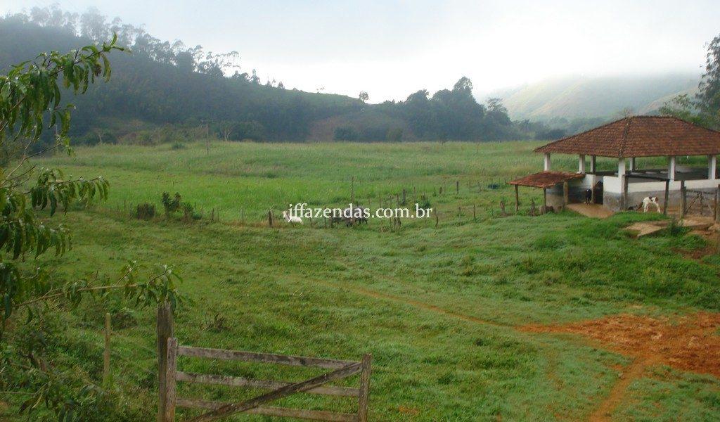 Fazenda em Rio Preto – MG – 240 hectares