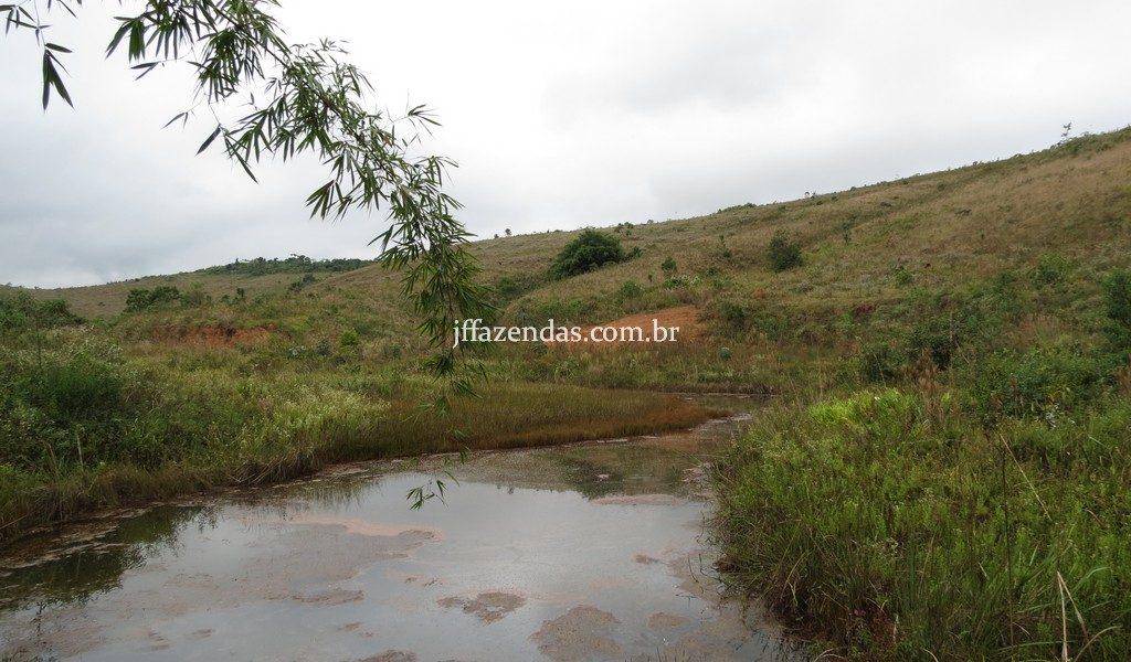 Fazenda em Juiz de Fora/MG – 82,5 hectares