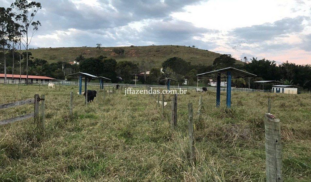 Haras em Rio Novo – MG – 6 hectares