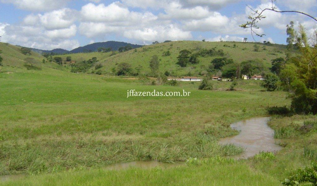 Sítio em Juiz de Fora/MG – 30 hectares