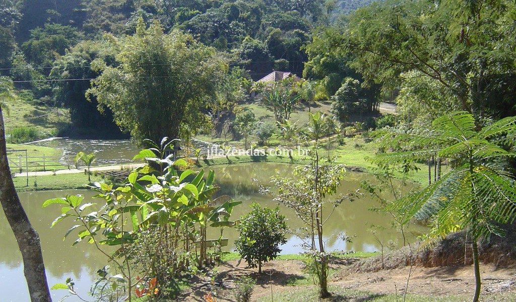 Sítio de alto padrão em Juiz de Fora/MG – 4 hectares