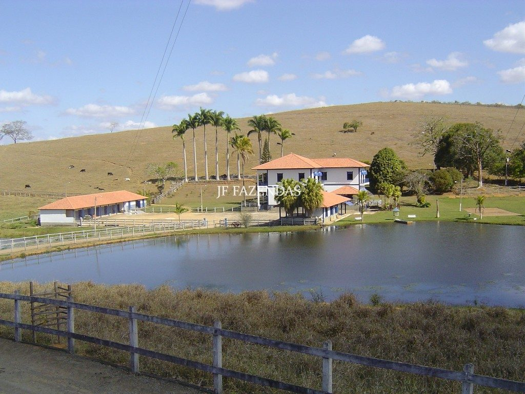 Fazenda em Rio Novo/MG – 270 hectares