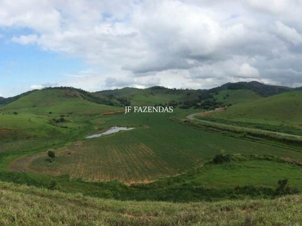 Fazenda em Leopoldina-MG – 240 hectares