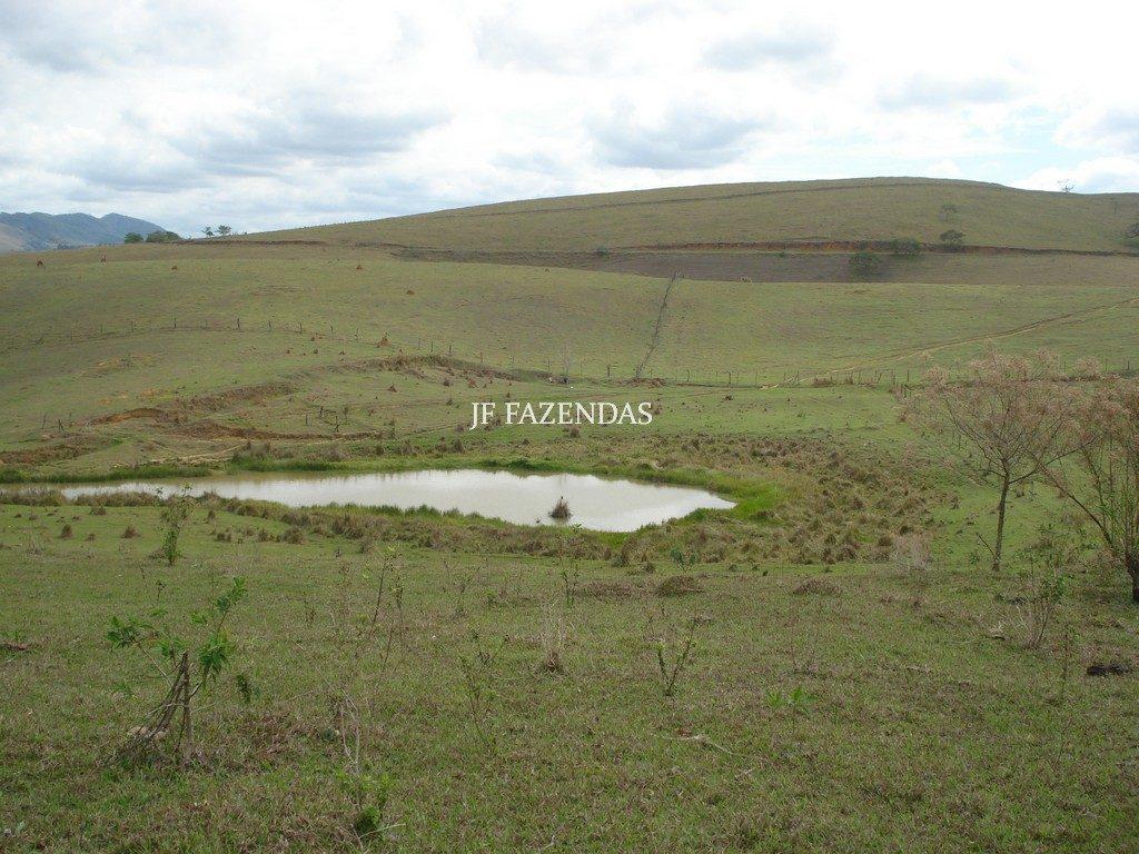 Fazenda em Rochedo de Minas – MG – 121 hectares
