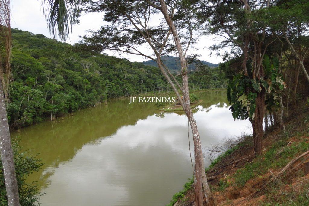 Fazenda em Piau-MG – 64 hectares