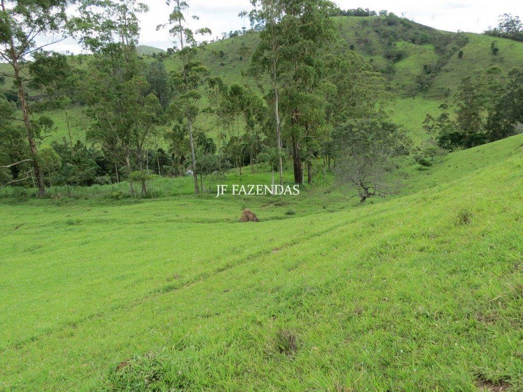 Sítio em Juiz de Fora-MG – 17 hectares