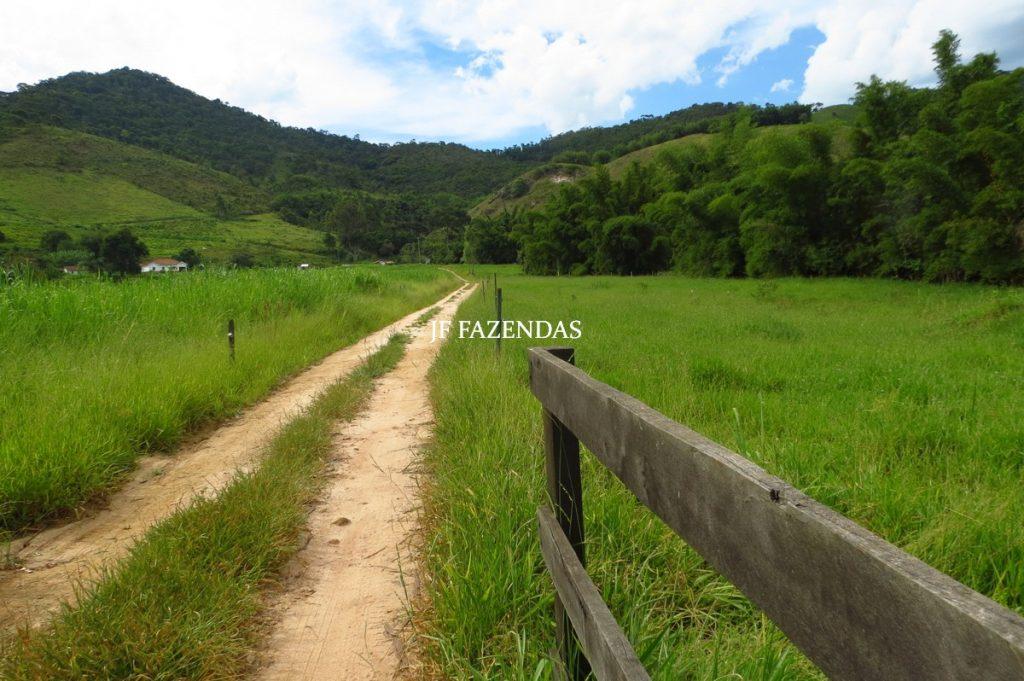 Fazenda em Belmiro Braga-MG – 177 hectares