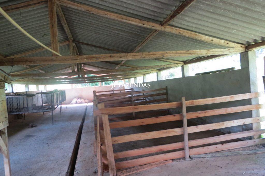 Fazenda em Lima Duarte-MG – 286 hectares