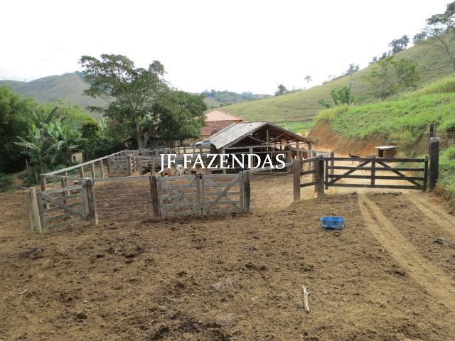 Fazenda em Juiz de Fora-MG – 94 hectares