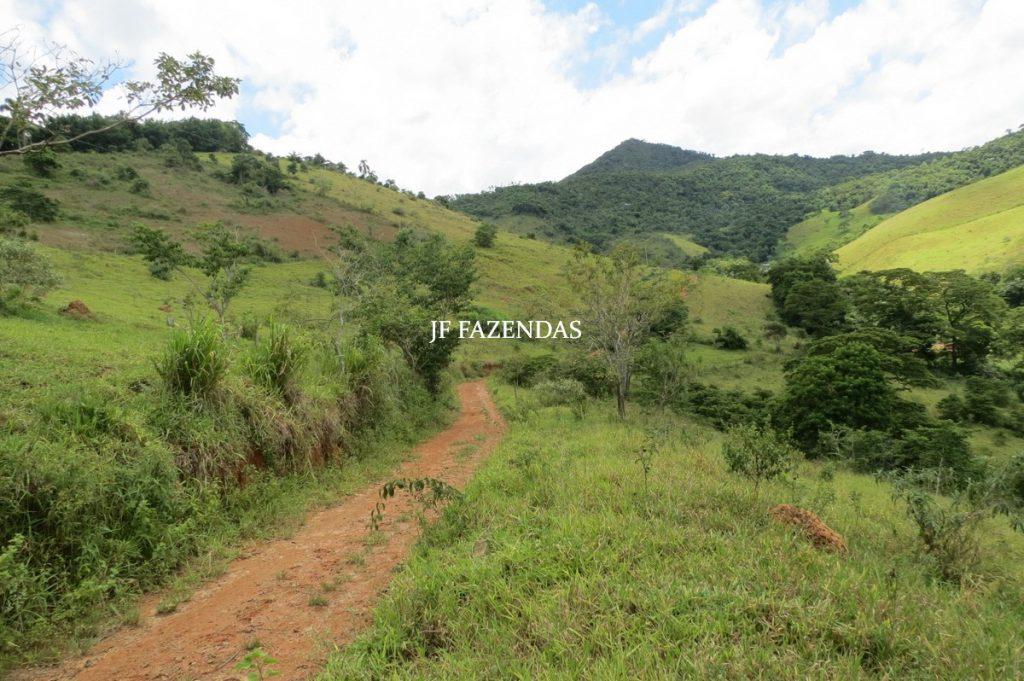 Sitio em Piau- MG -17.4 hectares
