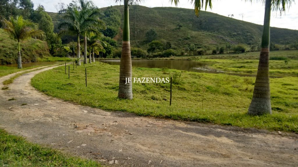 Sítio em Juiz de Fora – MG – 52 hectares