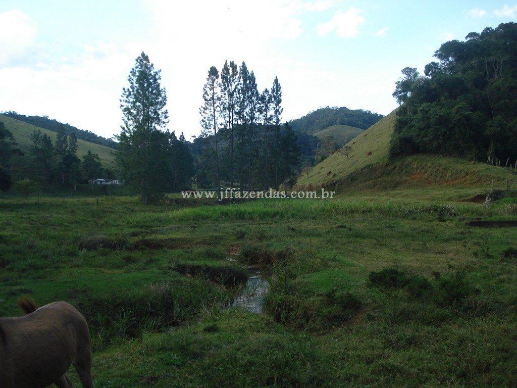 Fazenda em Santa Barbara do Monte Verde – MG – 114,2 hectares