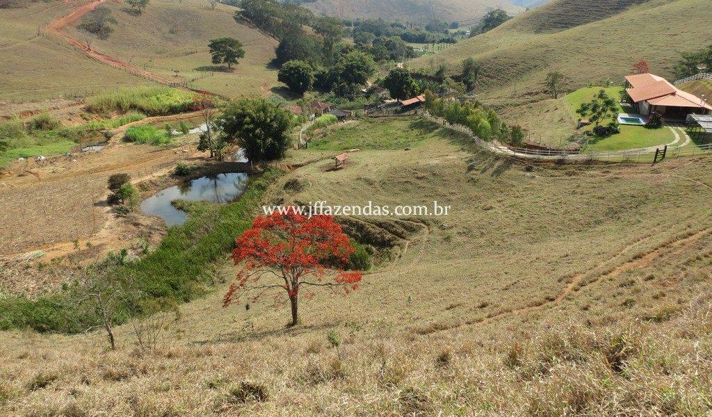 Sítio em Juiz de Fora – 82,2 hectares