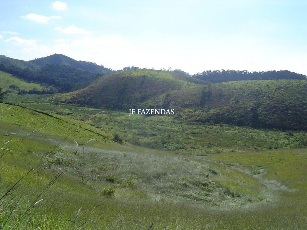 Fazenda modelo em Juiz de Fora- MG – 2679 hectares