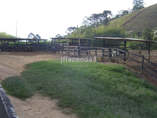 Sítio em Juiz de Fora- MG – 7,4 hectares