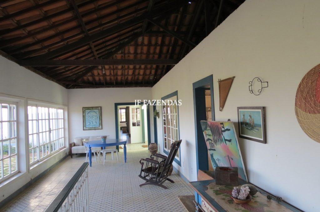 Sitio em São José das Tres Ilhas- MG – 43 hectares