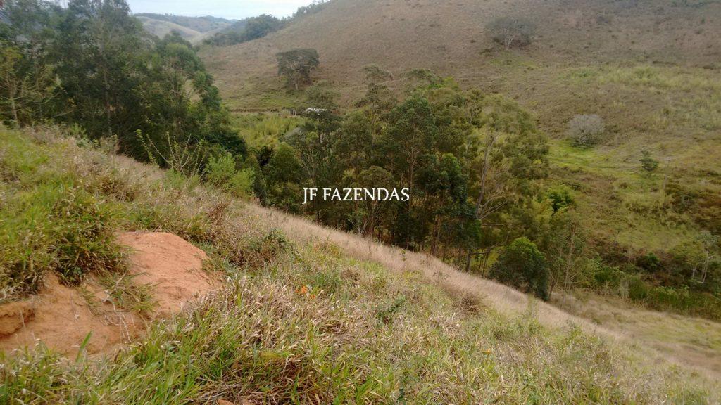 Sitio em Juiz de Fora- MG – 39 hectares