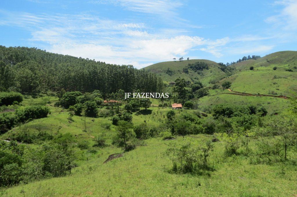 Sítio em Juiz de Fora – MG – 125 hectares