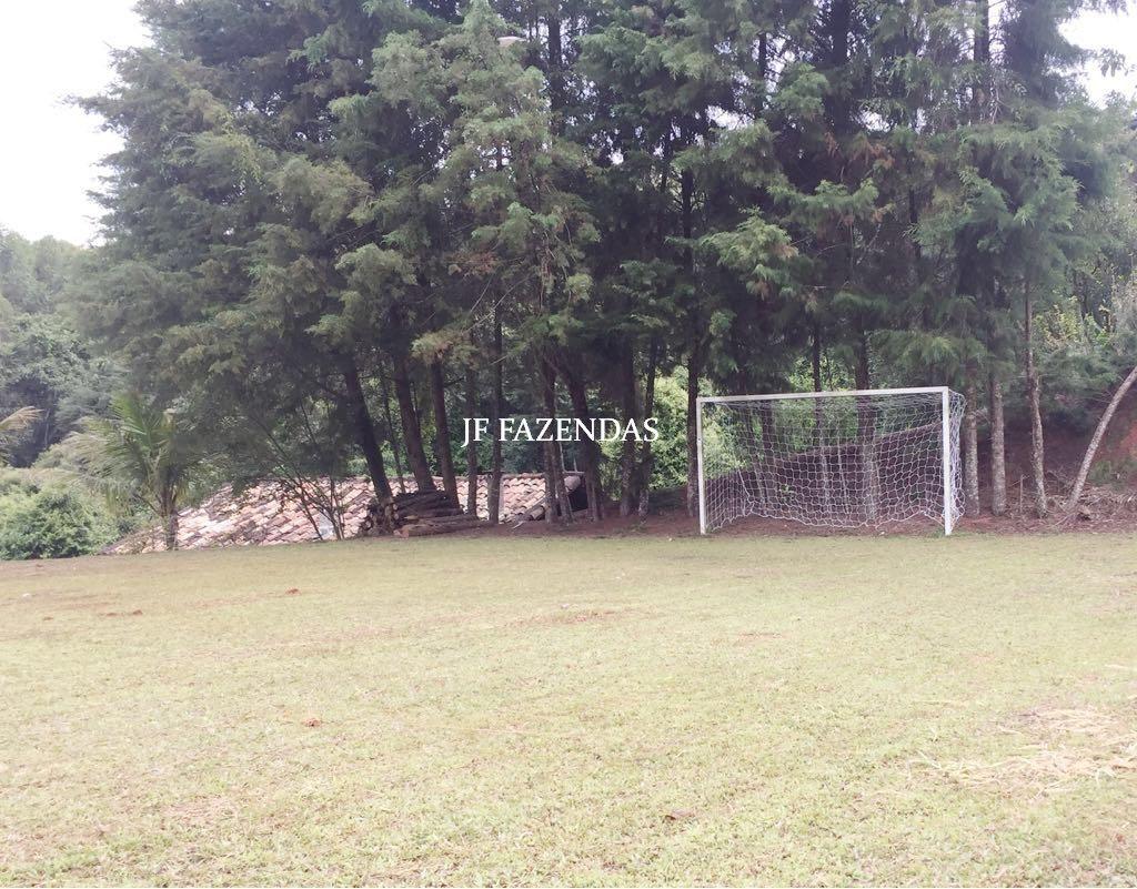 Fazenda em Alfredo Vasconcelos- MG 112 hectares