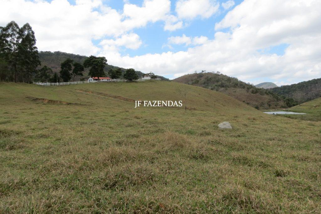 Sítio em Torreões – Juiz de Fora – MG  31 hectares