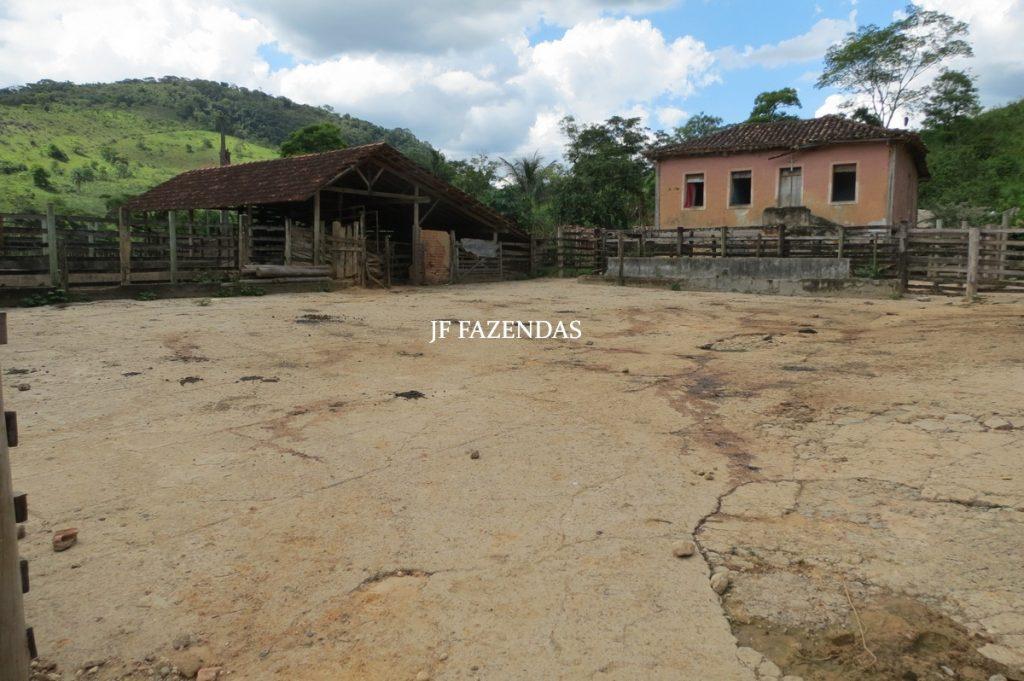 Fazenda em Mercês – MG – 381 hectares