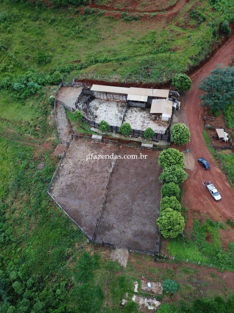 Fazenda em Muriaé-MG – 1568 hectares