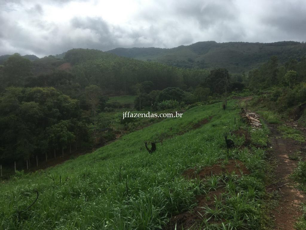 Fazenda em Mar de Espanha/MG – 87 hectares