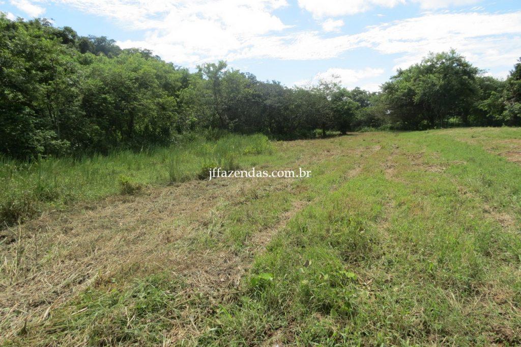 Fazenda em Piau/MG com 156,47.93 hectares