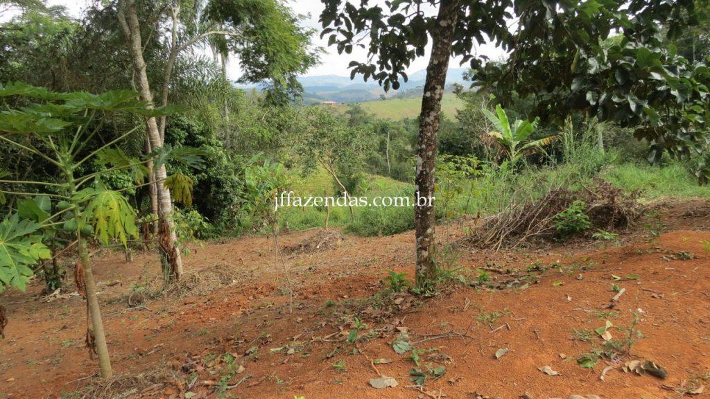 Sitio em Matias Barbosa – MG – 17 hectares