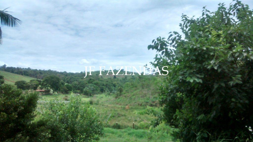 Sítio em Goianá – MG – 5 hectares