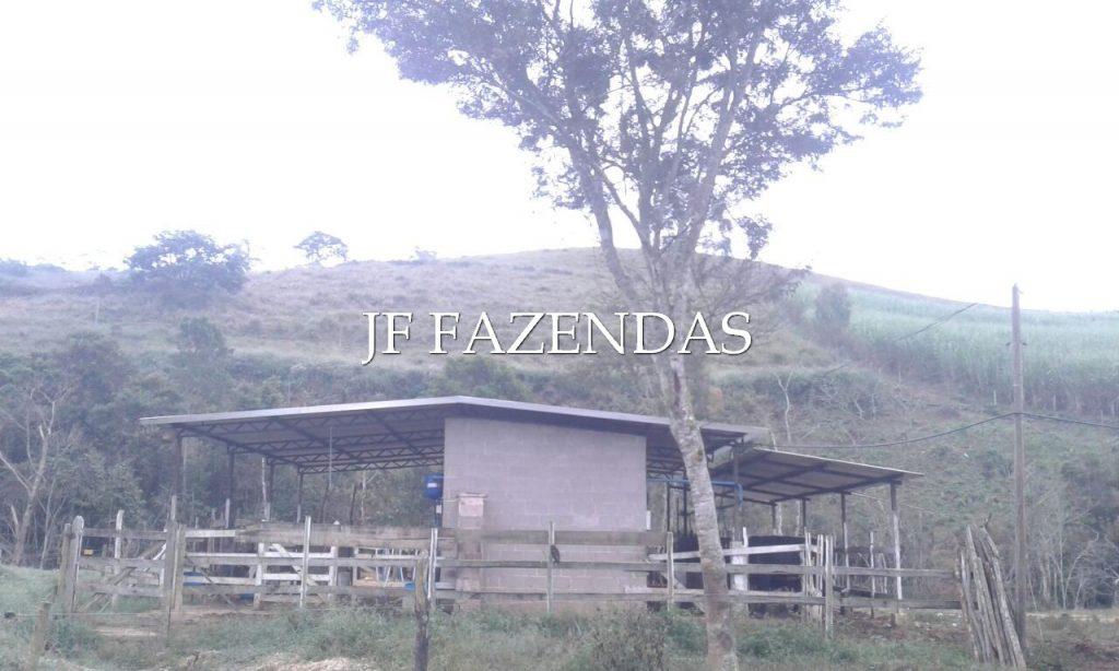 Sitio em Pedro Teixeira/MG – 44 hectares