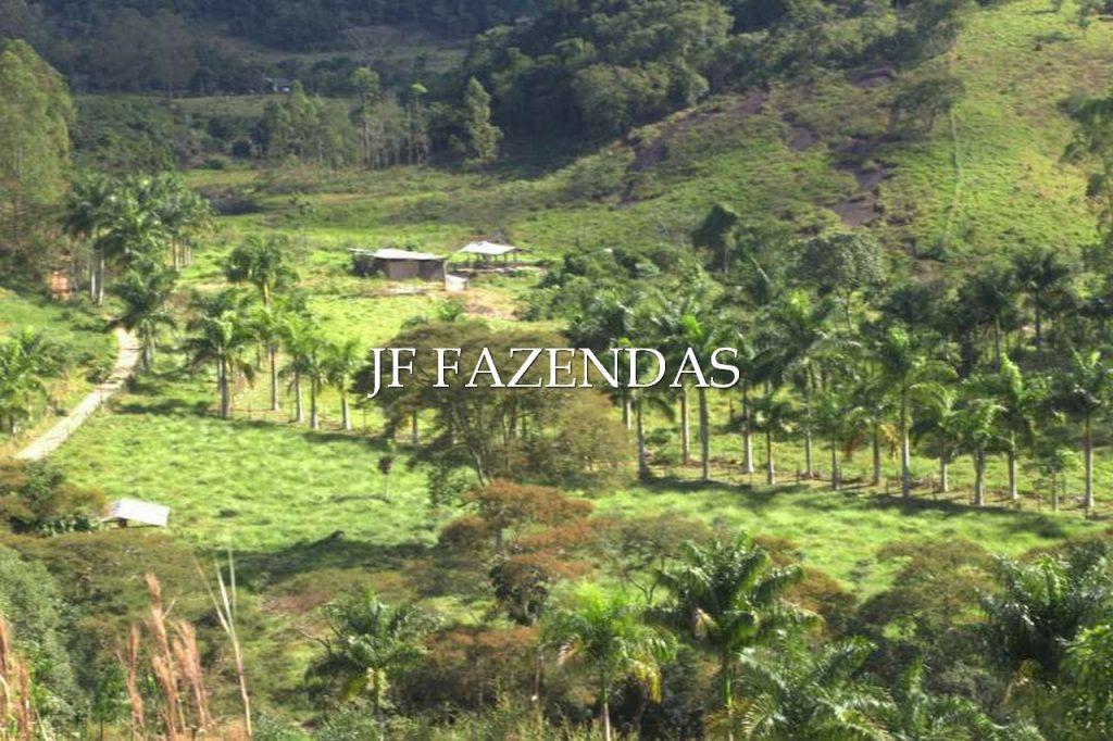 Sitio em Torreões – Juiz de Fora/MG – 80 hectares