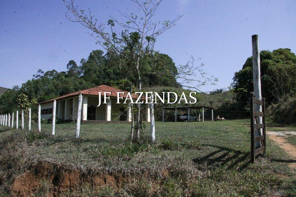 Sitio em Juiz de Fora-MG – 59 hectares