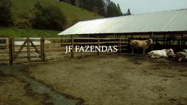 Fazenda em Estrela Dalva MG 836.5895 hectares